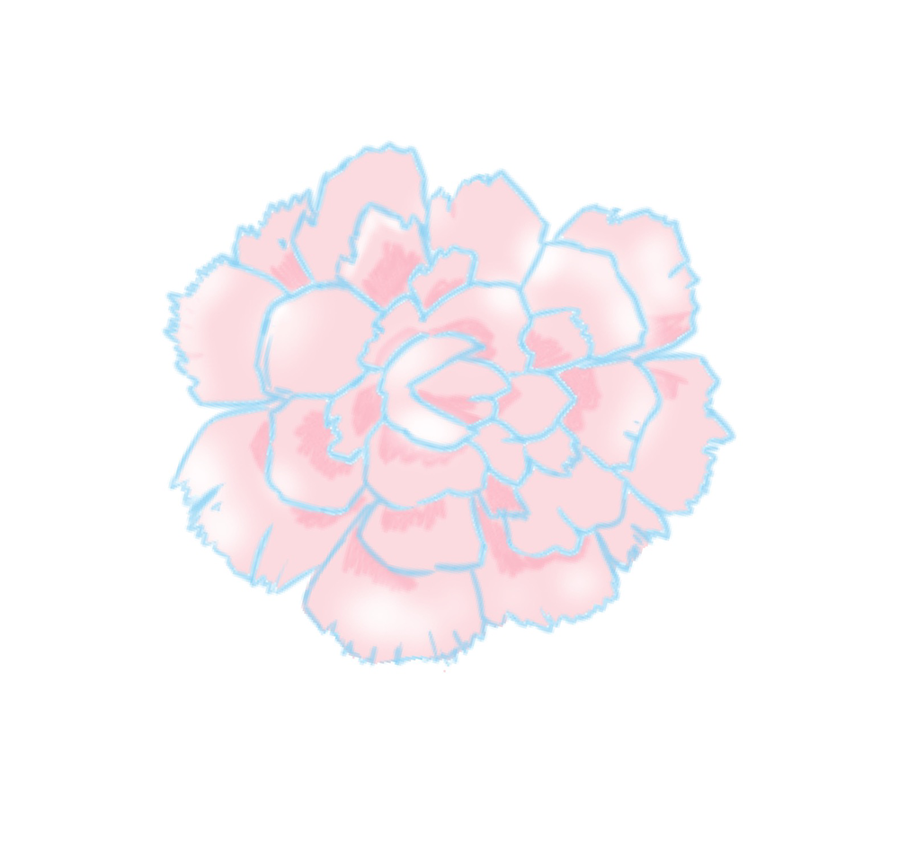 f:id:kensasuga2018:20200315164655p:plain