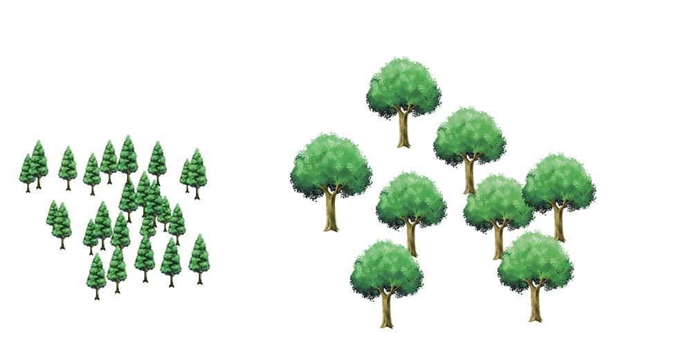 アイビスペイント 木ブラシ