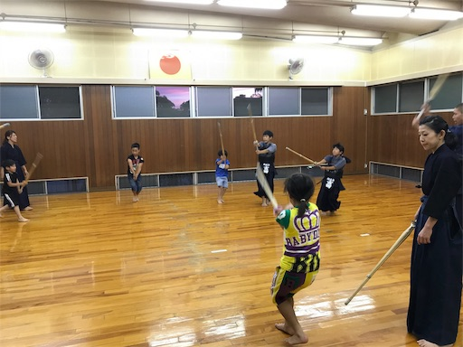 f:id:kenseikaiama:20170613220442j:image