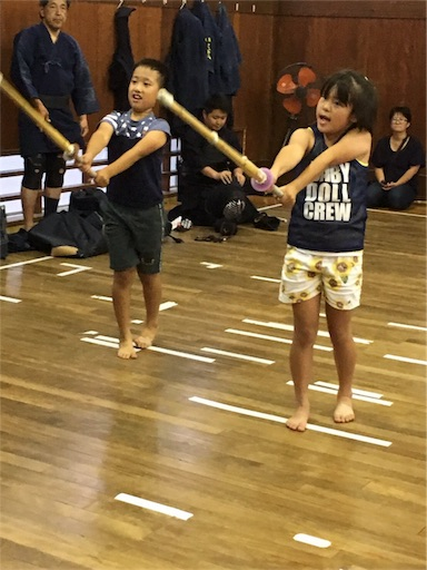 f:id:kenseikaiama:20170617191026j:image