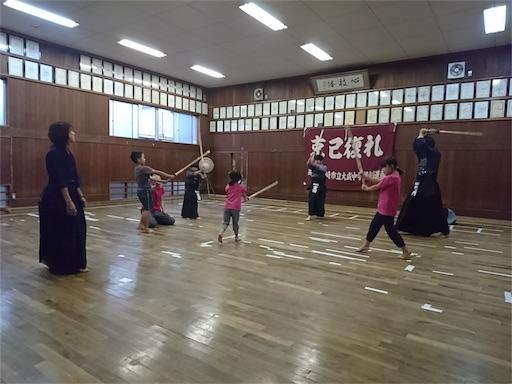 f:id:kenseikaiama:20170624205547j:image