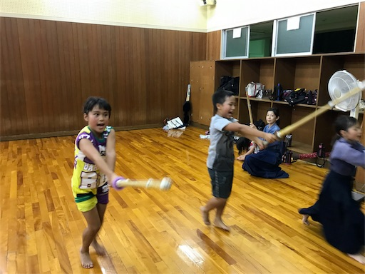 f:id:kenseikaiama:20170713214852j:image