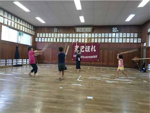 f:id:kenseikaiama:20170722225359j:image