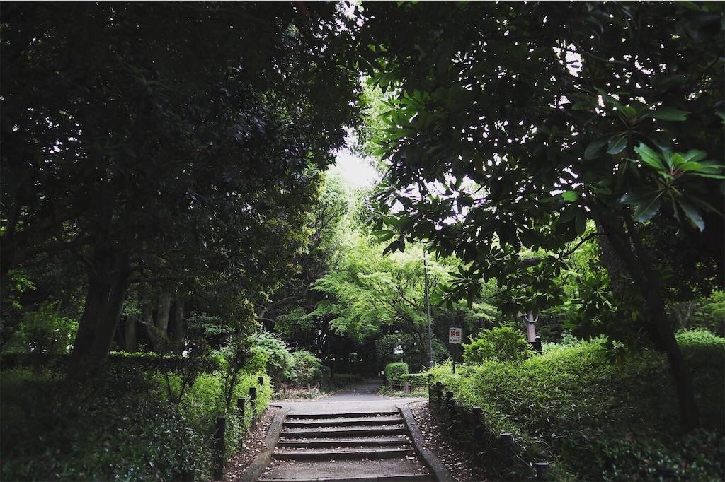 f:id:kenshi-hamamoto69:20190611201837j:image