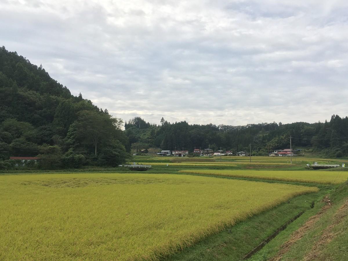 f:id:kensuke1108:20200920140620j:plain