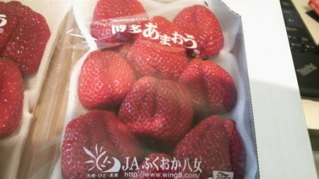 f:id:kensuke_jp:20100406171200j:image