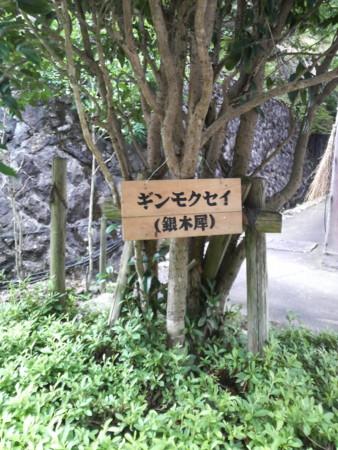 f:id:kensuke_jp:20100816132200j:image