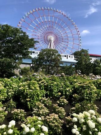f:id:kensuke_jp:20210620113436j:plain