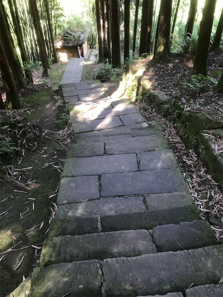 f:id:kensukemurase:20170608173427j:image