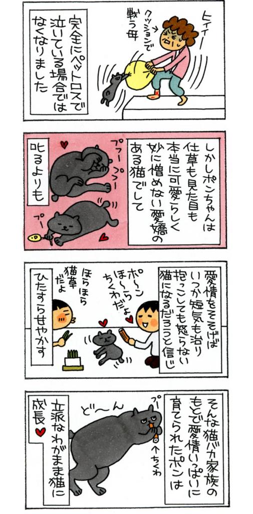 f:id:kensukesuzuki:20160511134549j:plain