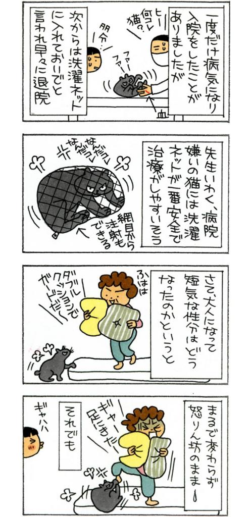f:id:kensukesuzuki:20160511134556j:plain