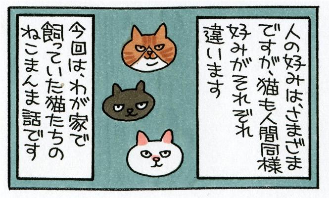 【マンガ】人間同様、好みはそれぞれ「うちの猫とねこまんま」