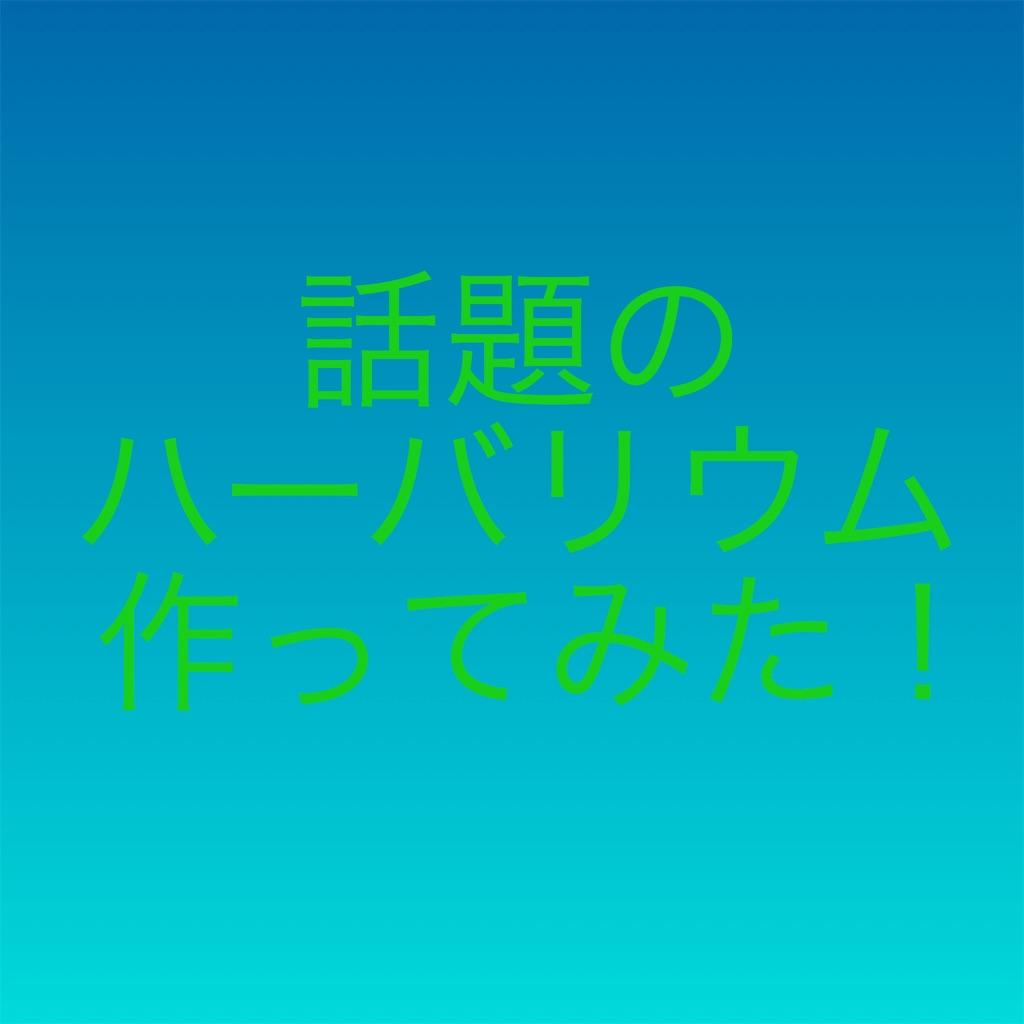 f:id:kenta0228:20180603155315j:image