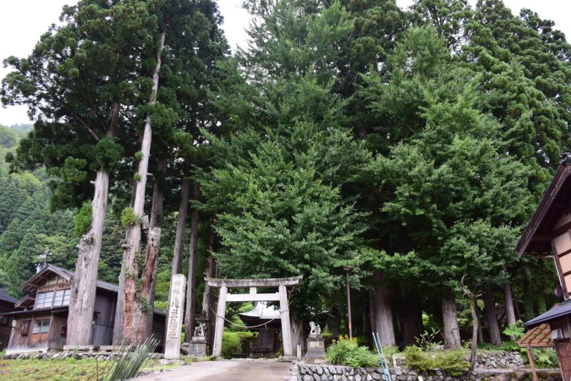 f:id:kentaro-takano:20141120184346j:plain