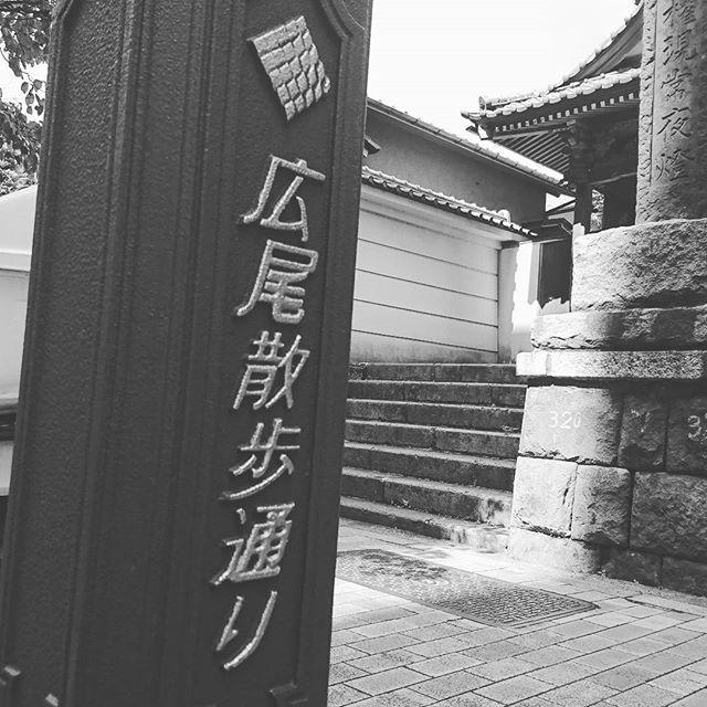 f:id:kentaro-takano:20180105183611j:plain