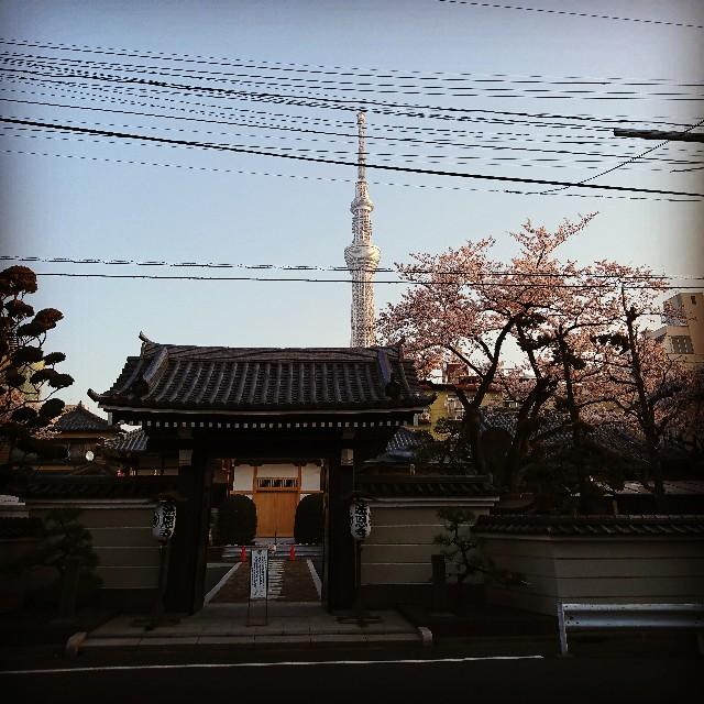 f:id:kentaro-takano:20180328005926j:image