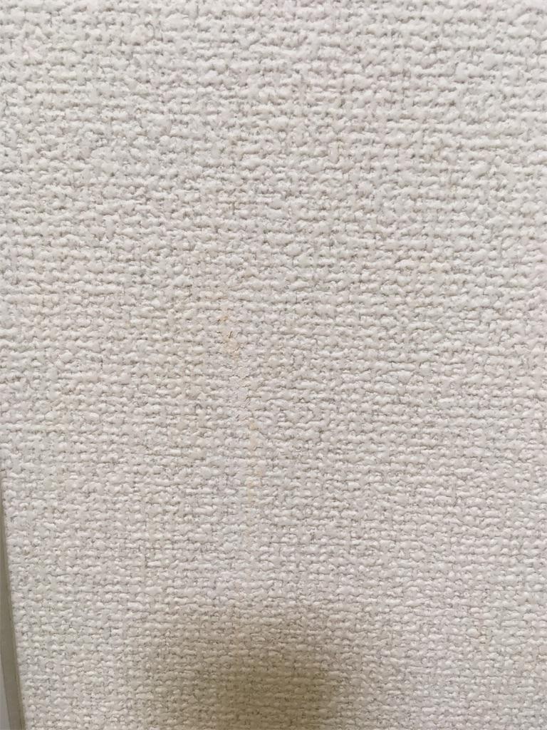 f:id:kentikukun:20180626222918j:image