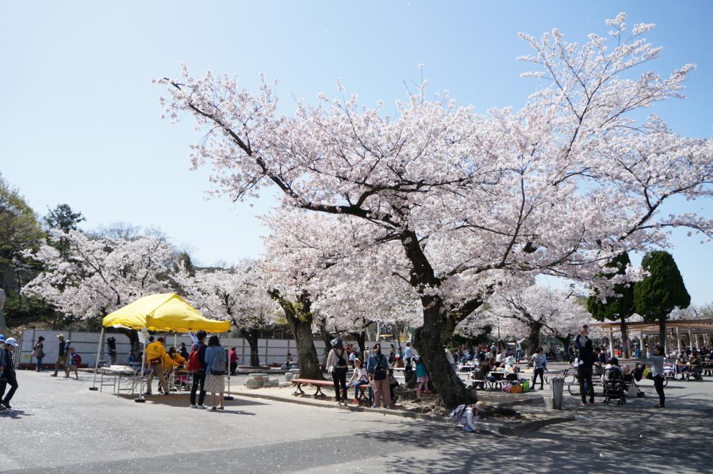 東山動物園,名古屋,動物園,観光,スポット