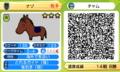 謎の馬  (ソリティ馬)