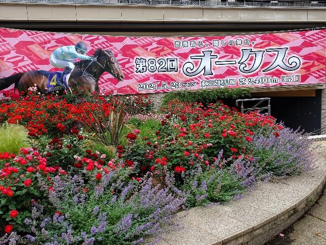f:id:ketsuokabo:20210522161848j:image