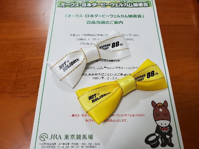 f:id:ketsuokabo:20210530075404j:image