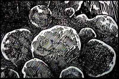 f:id:ketsurikichinkai:20101211175419j:image