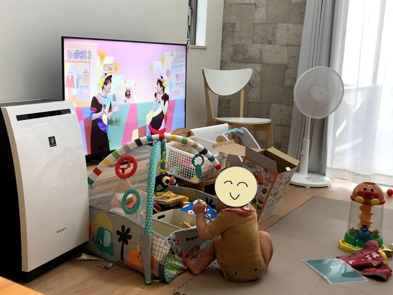テレビ前ベビーゲート