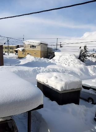 雪の住宅地