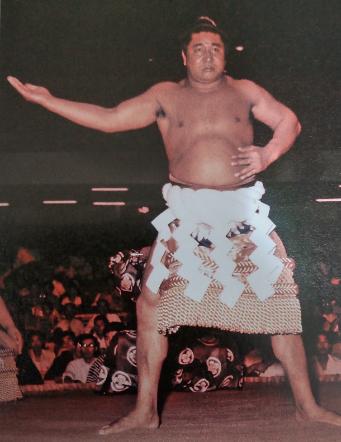 『大相撲「戦後70年史」』平成27年5月 ベースボール・マガジン社