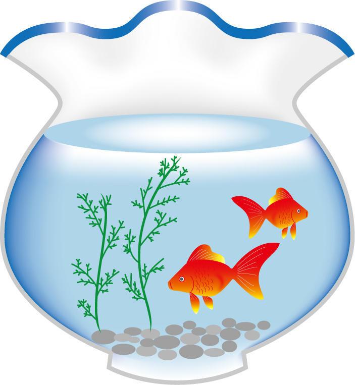 元気な金魚が泳ぐ金魚鉢