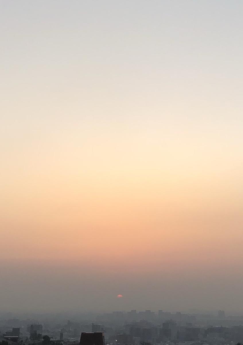f:id:keystoneforest:20190324161158j:plain
