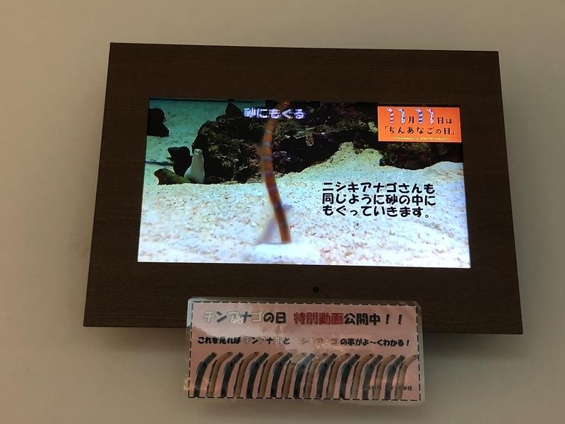 f:id:kgi-ariyama:20201111164317j:plain