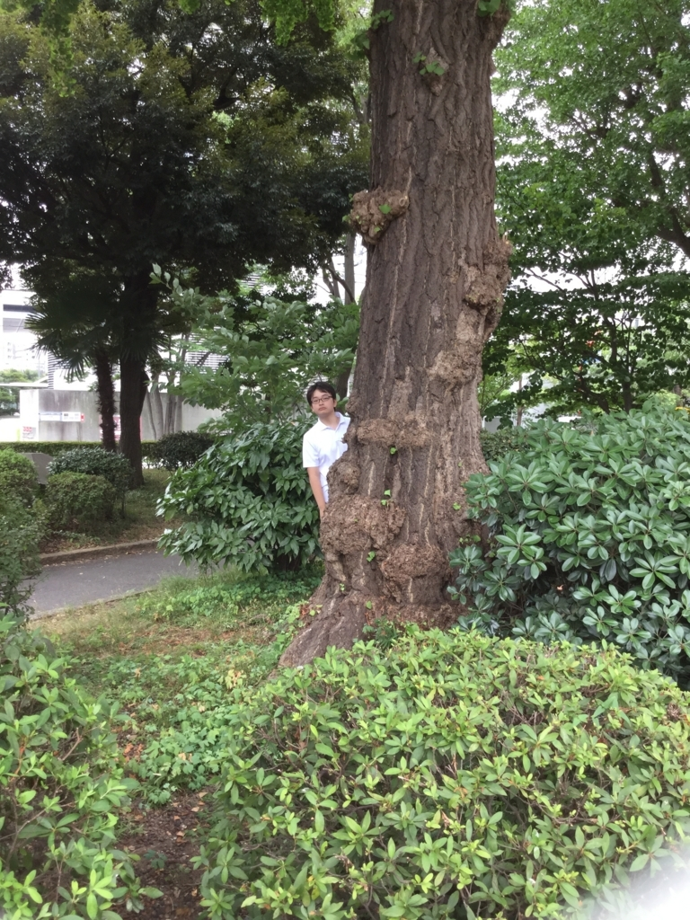 f:id:kgi-yano:20180728155500j:plain