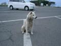 OgaHantou,FutarinoFreeTicket,akita-trip2002
