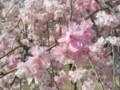 p04,TenryuKyo,iida-line,IidaSen-trp-2004