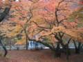 Nakano-MomijiYama,Kuroishi,Aomori-200711
