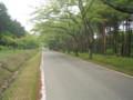 p02,YogoshiYama-ShinrinKoen,Hiranai,Aomori-200805