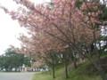 Parking,TsubakiYama-kaisuiYokujo,NatsuDomari-Hanto,Aomori-200805