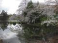 [ao1105]p02,Sakura2011,SannaiReien,Aomori