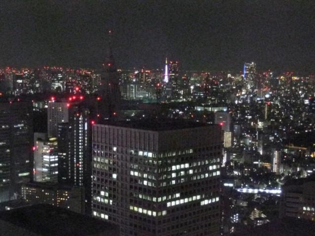 25F-NorthTower,Tokyo-Metropolitan-Government,2011