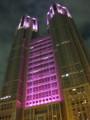 Tokyo-Metropolitan-Government,2011