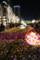 01,FlowerFantasia,Lightopia2011,Marunouchi,tokyo
