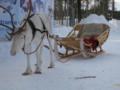 [trp-Finland13]Tunakkay,02,SantaClausVillage,Rovaniemi,LapLand,tour-Finland-2013