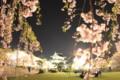 [trp-ao1405]p02,Yozakura,Tenshu-kaku,HonMaru,Hirosaki-Park