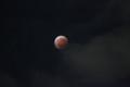 Total-LunarEclipse-141008,Oota,tokyo