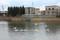 p02,swan,Sannai-Muma,sannai-reien,aomori-city