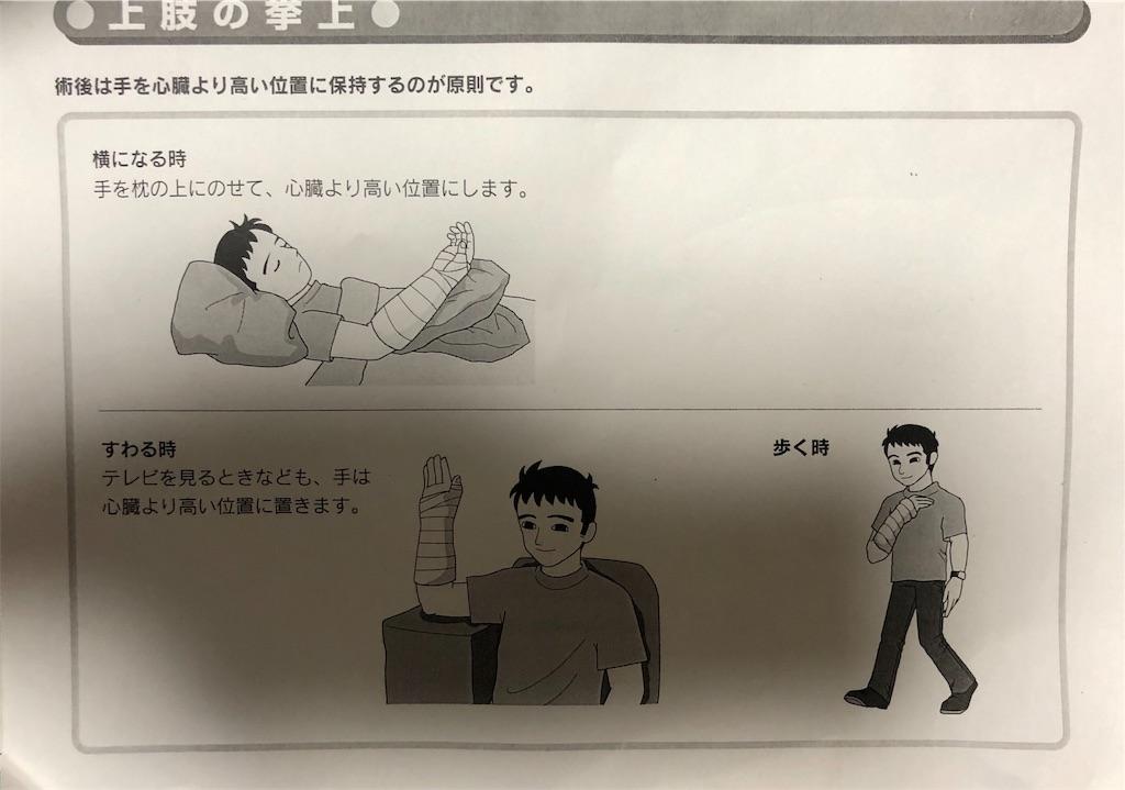 f:id:ki-kochan:20190426183818j:image