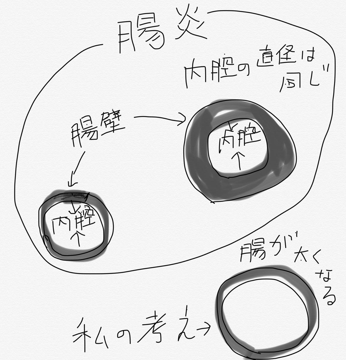 f:id:ki-kochan:20191023192043j:plain