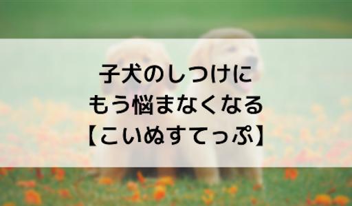 f:id:kib3000:20190814224934p:image