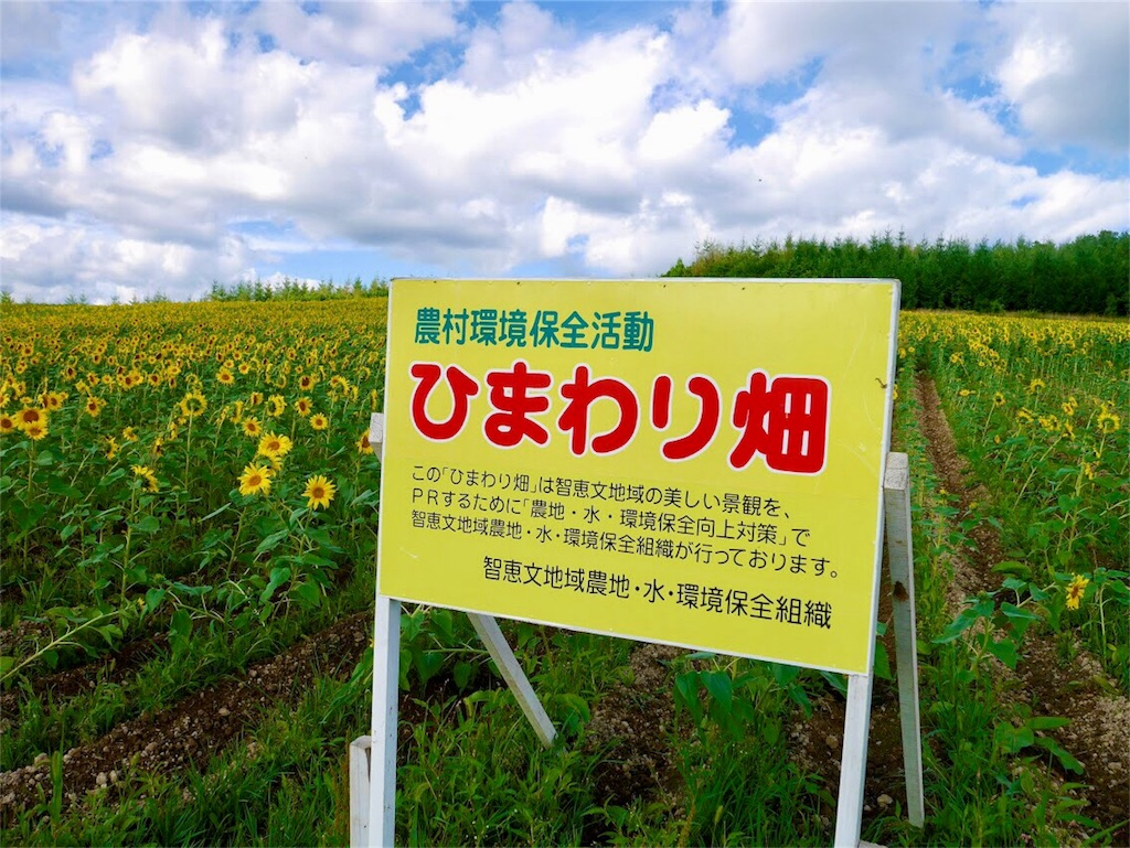 f:id:kibunsonouchi:20180818225417j:image